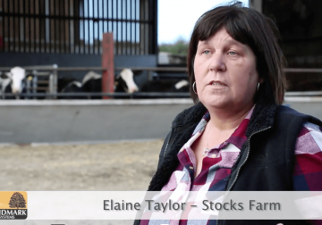 Elaine Taylor Stocks Farm