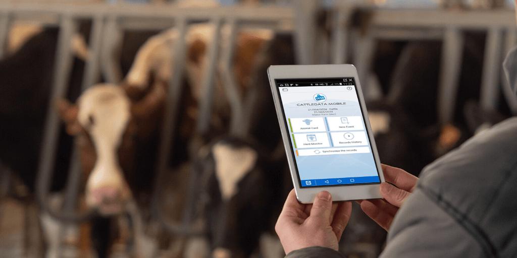 the cattledata herd records app